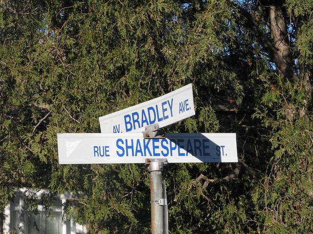 Shakespeare and Bradley - Vanier