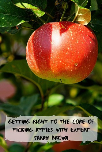 Getting Right to the Core of Picking Apples with Expert Sarah Brown