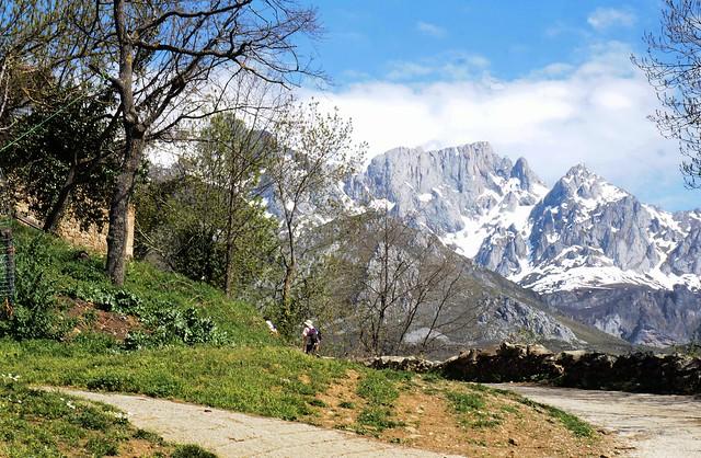 Mogrovejo. Cantabria
