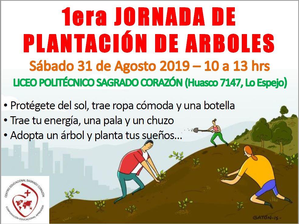 Plant_Arbol