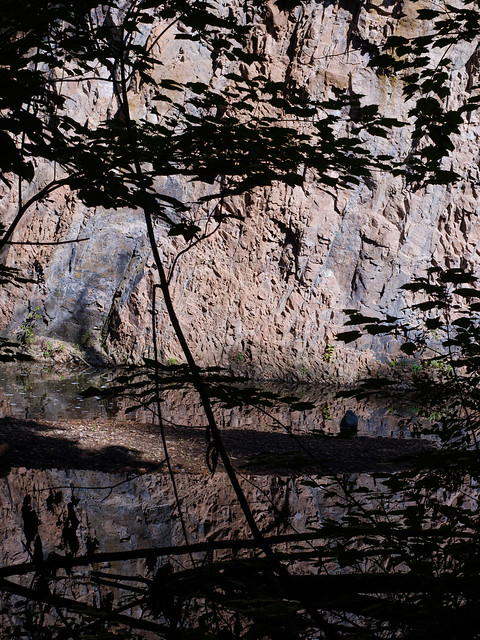 Congdon Park Cliffs