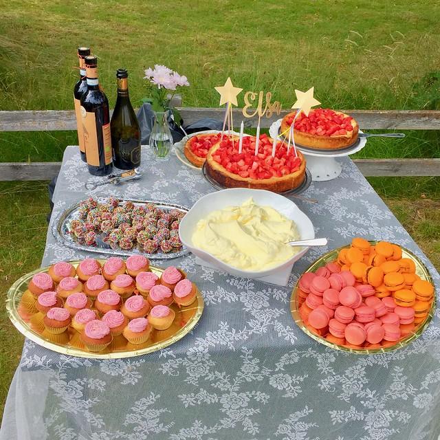 Birthday Cakes for Elsa