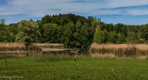 ostschweiz landscape landschaft dt1650mmf28ssm nature water sony imfreien natur clouds pond baum wasser himmel reflection spiegelung sky boat slta77 weiher wolken outdoor ossingen zürich schweiz