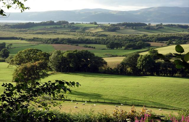 Dyffryn Dyfi o Dal-y-bont, Ceredigion