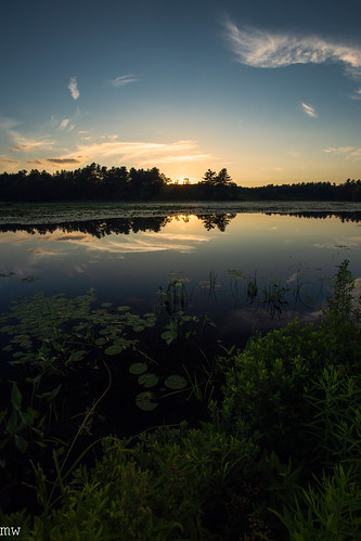 cranberry bog carlisle sunset massachusetts new england