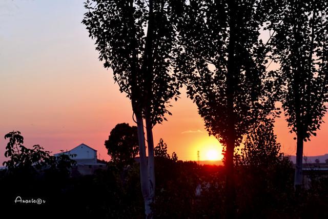 28_Puesta de sol en Linares