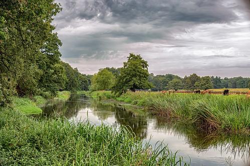 River Meanders