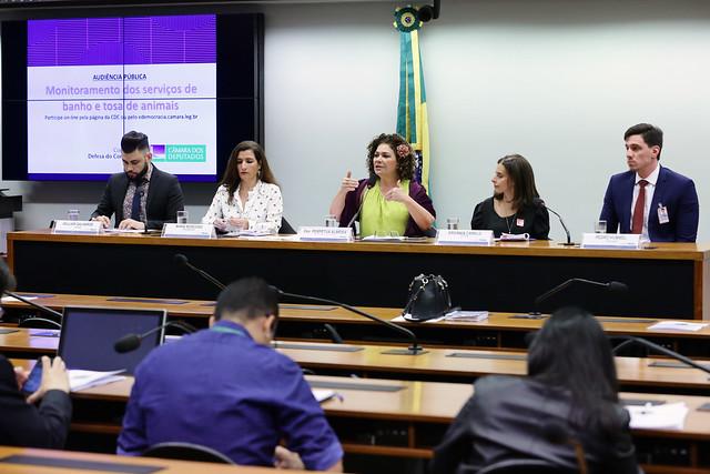 27-08-2019 - Audiência Pública na Câmara dos Deputados - Monitoramento dos Serviços de Banho e Tosa de Animais