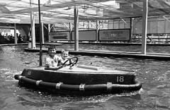 Au parc Belmont : dans les bateaux tamponneurs. Juillet 1953. VM105-Y-2_011-002. Archives de la Ville de Montréal.