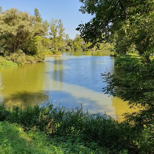 Doubs(23) 20190823_105108