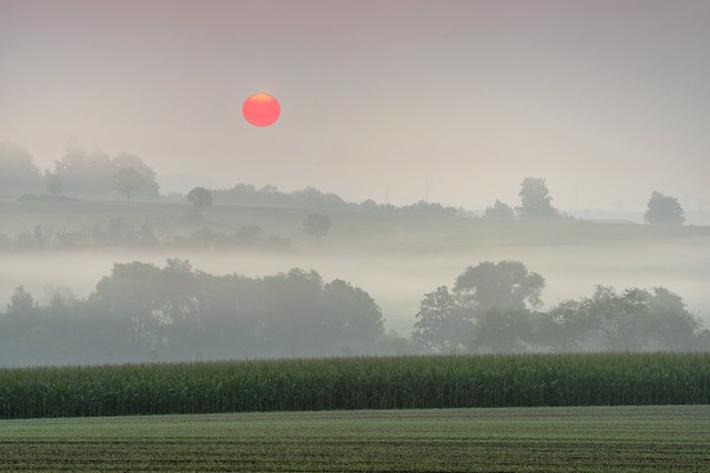 *The fight of the sun against the fog...*