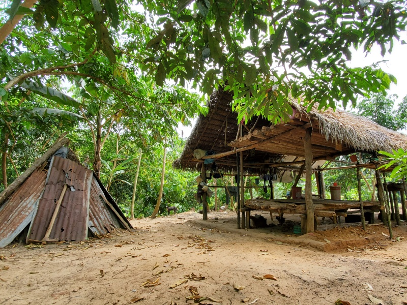 house in the Amazon jungle