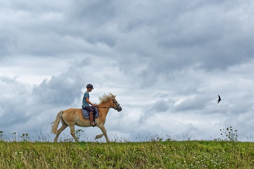 Youngster riding a horse | by Ron@ld53