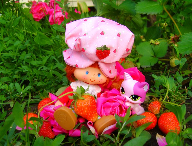 Strawberry Shortcake in patch #3