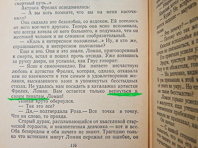 Выражение про родные пенаты из романа про Учителя Гнуса | HoroshoGromko.ru