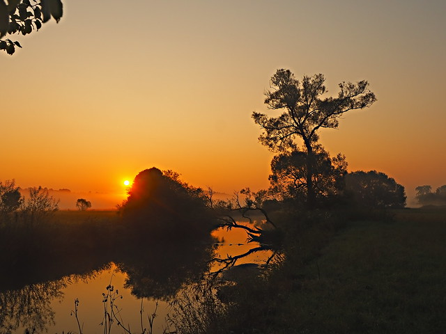 summersunrise by the river 2019 P8270099