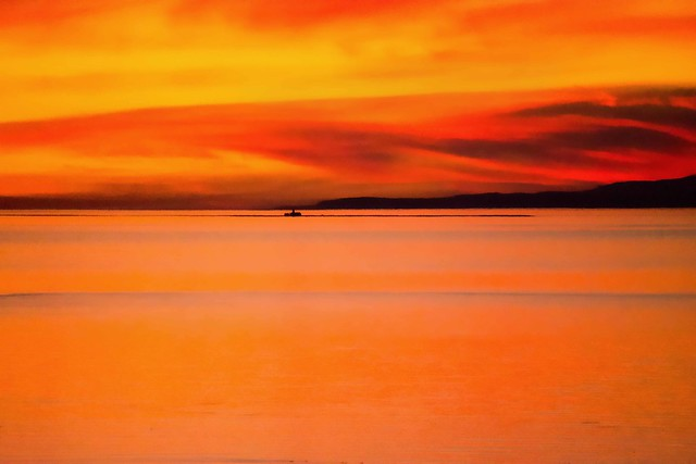 Orange is red brought nearer to humanity by yellow. ~~Wassily Kandinsky