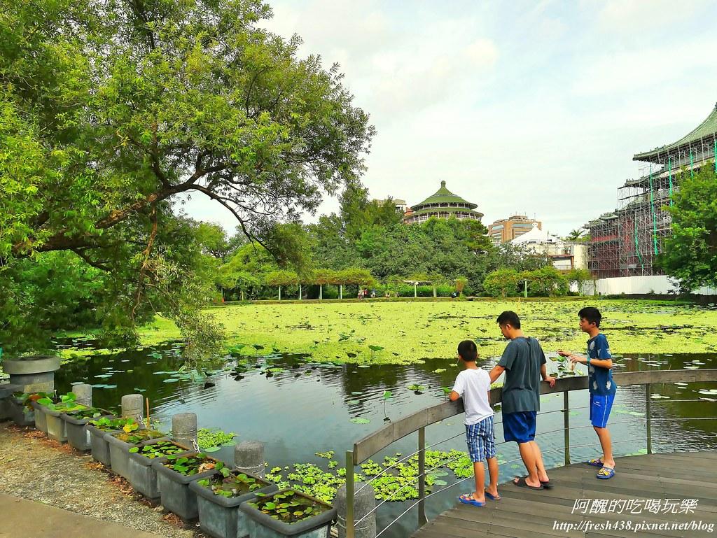 38-1植物園荷花池