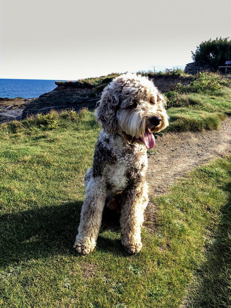 Coast walk