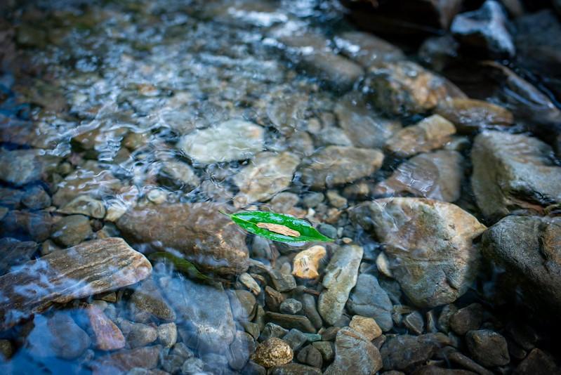 Kuragari-Canyon Nikon D810+Tamron45mm