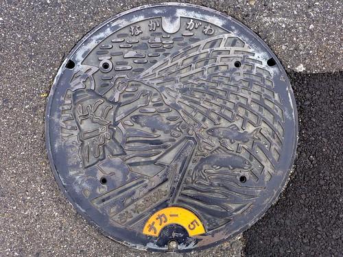 Saitama pref, manhole cover (埼玉県のマンホール)