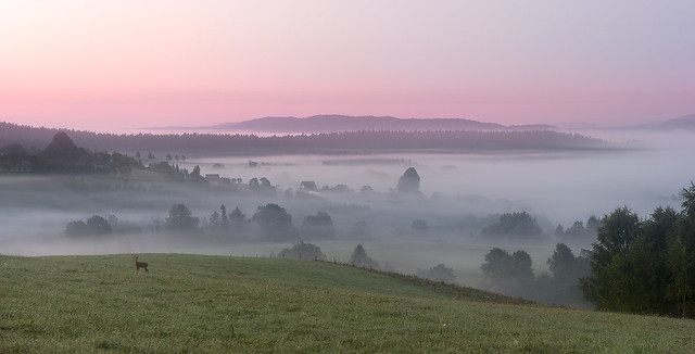 Dawn in the Bieszczady