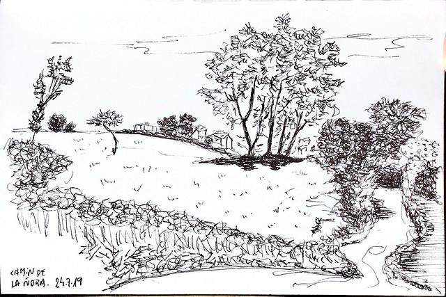 Camín de la Ñora (Asturias)