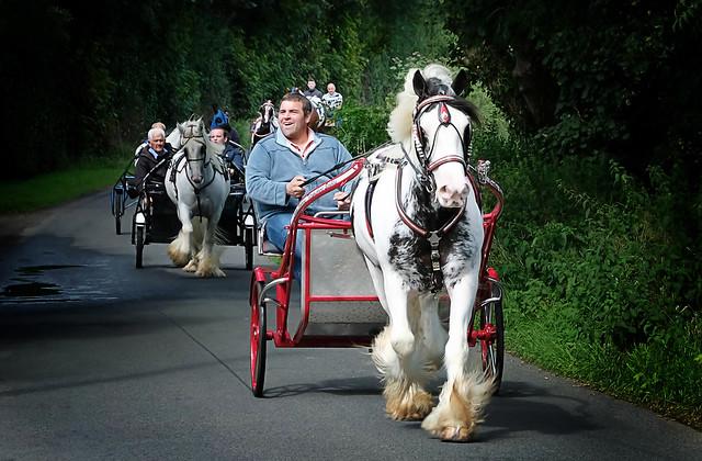moneyreagh horse drive