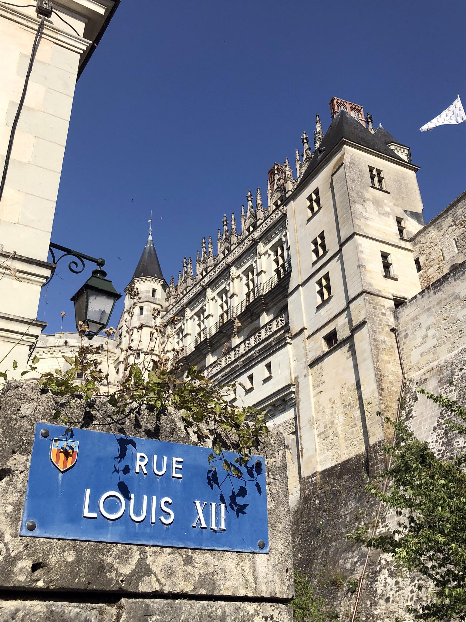 Valle del Loira en 2 días, Francia - Amboise, Tours, Chenonceau valle del loira en 2 días - 48643794841 c4247de390 k - Valle del Loira en 2 días