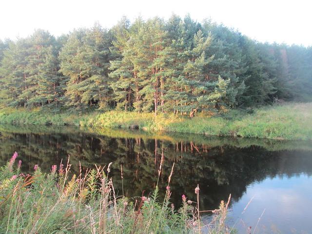 River Don, Dyce , Aberdeenshire