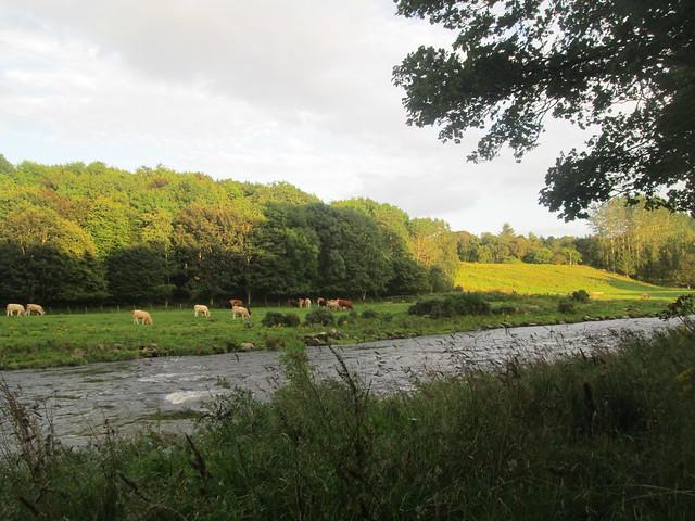 River Don, Dyce,  Aberdeenshire