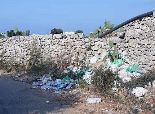 rifiuti polignano (2)