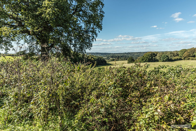 North Downs from Abinger Motte – fond memories of a view.