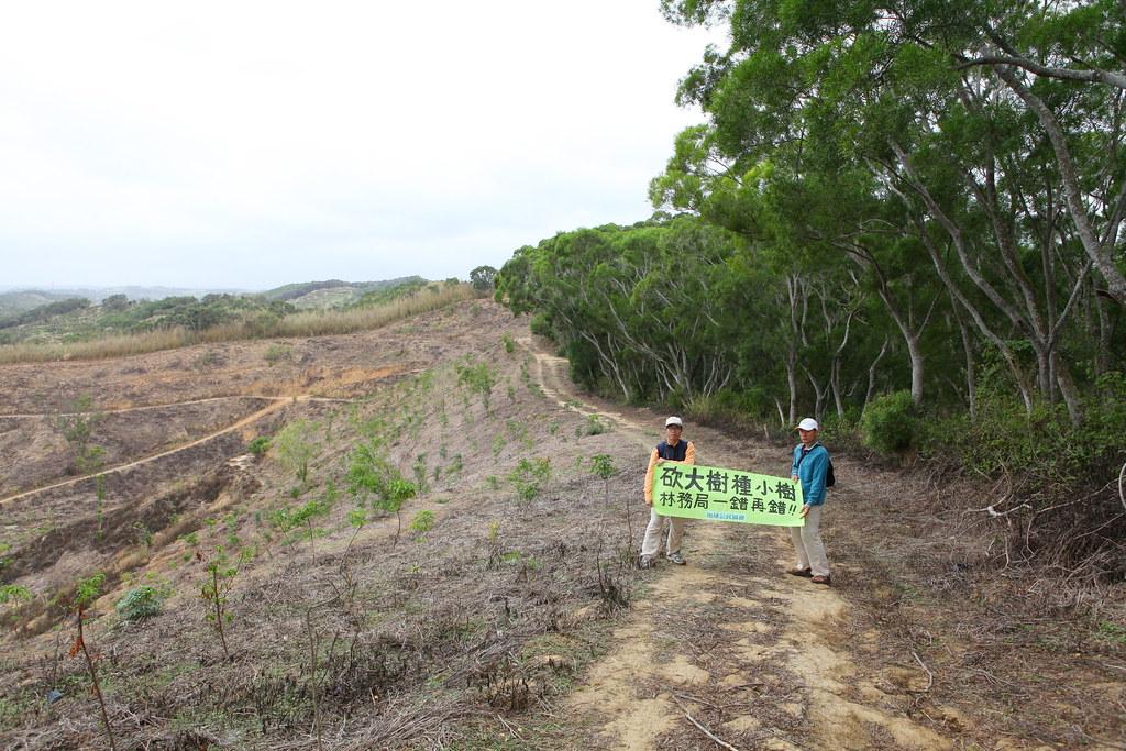 種樹造林不一定是好事!錯誤的政策,造成數萬公頃森林的損失。攝影:何俊彥 p.6~7