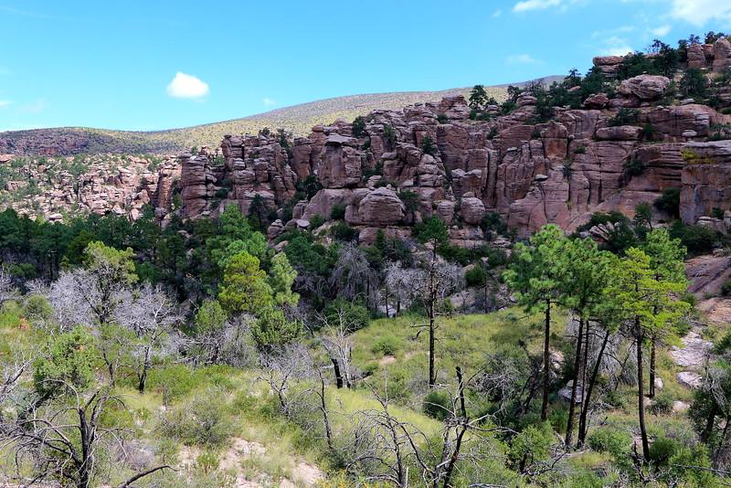 IMG_3388 Natural Bridge Trail, Chiricahua National Monument