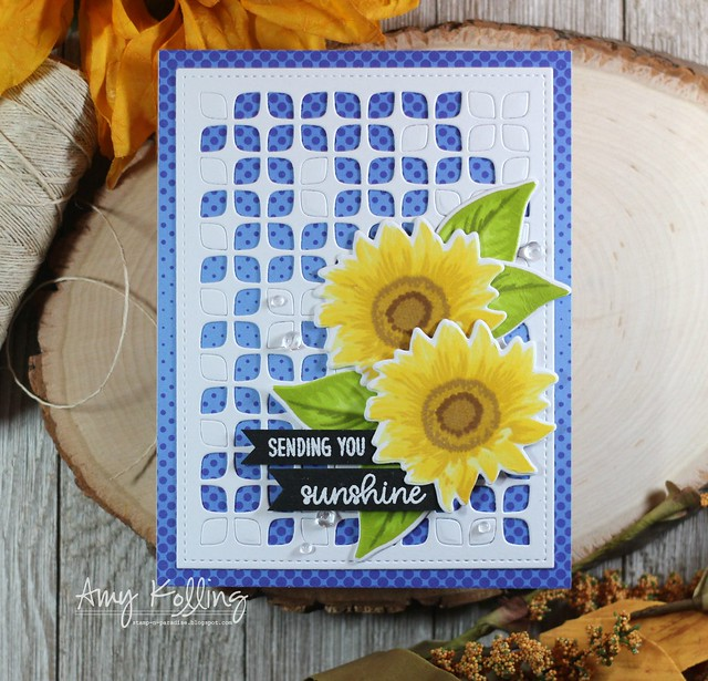 Sunny Studio Stamps: Sunflower Fields Everyday Cards by Amy Kolling