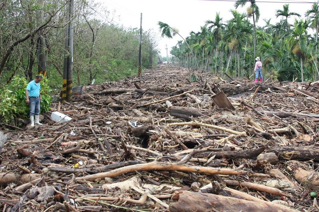 莫拉克風災後,林邊溪潰堤,難以計數的漂流木堆滿堤旁道路長達數公里,河川上游山林的殘破,是不是該反思百年伐木?攝影:傅志男 p.8~9