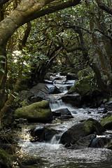 Washpen Creek