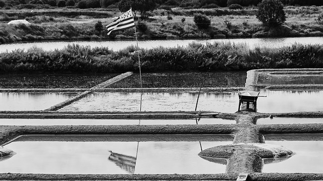 The Breton flag flying in the salt marshes in Guerande