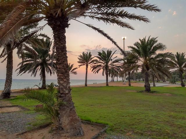 #yanbu #yanbu_ksa #sea #seaview #seafront #waterfront #saudiarabia #datepalm #sunset #sunsetbeach #beach #motorola #motorolaonevision