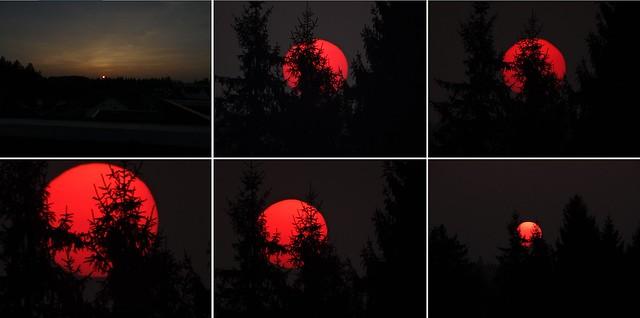 Bilder Abendsonne