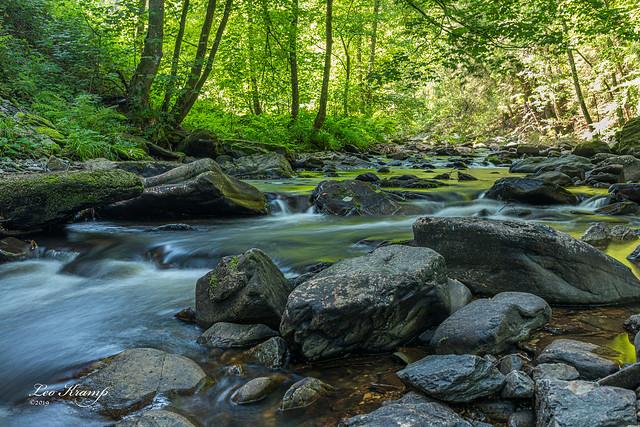 Rur River | Rivier Roer