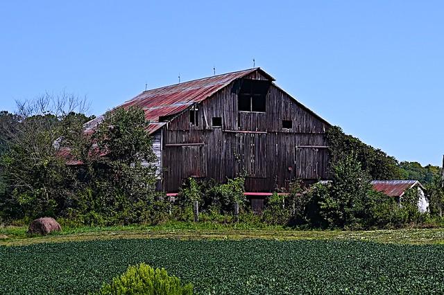 Barn off Hayes Station Road,  Falmouth, Kentucky