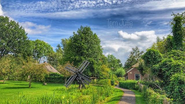 Paaltjasker, Poldermolen, Giethoorn Noord, Overijssel, Netherlands - 2825
