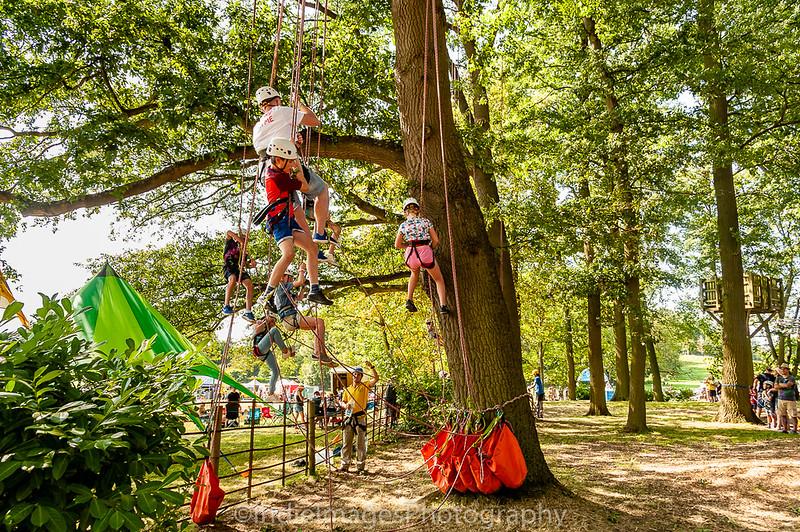 Tree climbing-2
