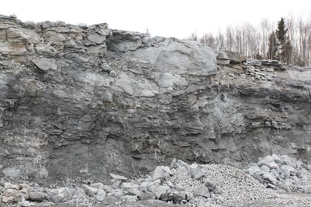 Vasalemma lubjakivikarjääri sein / Vasalemma limestone quarry wall, Estonia