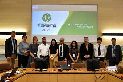 IYPH International Steering Committee