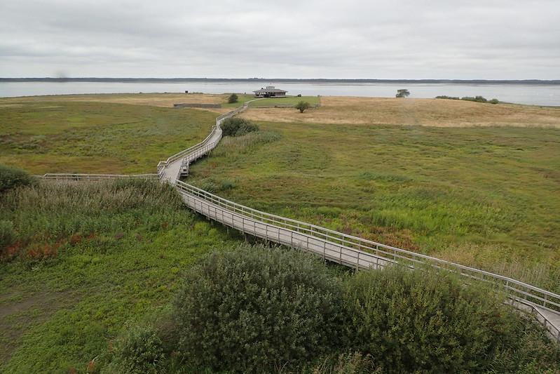 Honborgasjön