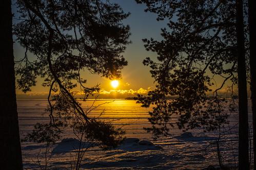 canon6d sunrise landscape nature sun outdoors outside finland trees