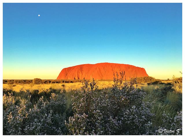 Uluru Ayers Rock Australia -30
